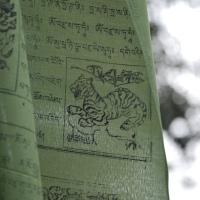 Del Pita del. Sigue tu espíritu. 15 días en la India del Norte (Preparativos)